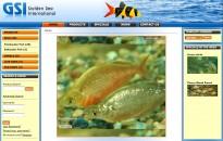 web_0005_Golden Sea International